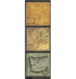 Lord Of The Rings - Maps Of Middle-Earth (Poster Da Porta 53x158 Cm)