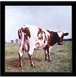 Pink Floyd - Atom Heart (Stampa In Cornice 30x30 Cm)