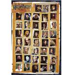 Harry Potter 7 - Characters (Poster Maxi 61x91,5 Cm)