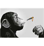 Steez - Smoking (Poster Maxi 61x91,5 Cm)