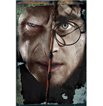 Harry Potter - Voldermort And Harry (Poster Maxi 61X91,5 Cm)