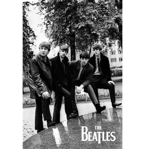 Poster The Beatles - Pose - 61x91,5 Cm