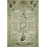 Harry Potter - Hogwarts School List (Poster Maxi 61X91,5 Cm)