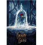 Beauty And The Beast Movie - Enchanted Rose (Poster Maxi 61X91,5 Cm)