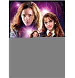Puzzle Harry Potter 264602