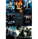 Poster Harry Potter - Collection - 61x91,5 Cm