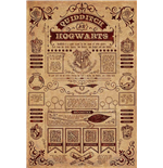 Harry Potter - Quidditch At Hogwarts (Poster Maxi 61X91,5 Cm)