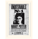 Harry Potter (Undesirable No1) (Stampa 30X40 Cm)