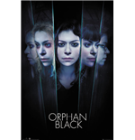 Orphan Black - Faces (Poster Maxi 61x91,5 Cm)