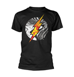 T-shirt Dc Originals MOLTEN FLASH LOGO