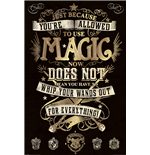 Harry Potter - Magic (Poster Maxi 61X91,5 Cm)