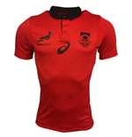 T-shirt Sud Africa rugby 2017-2018