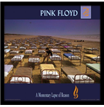 Pink Floyd - A Momentary Lapse Of Reason (Cornice Cover Lp)