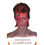 Poster David Bowie PP31521