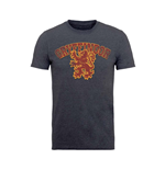 T-shirt Harry Potter GRYFFINDOR SPORT