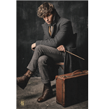 Fantastic Beasts: The Crimes Of Grindelwald - Newt Scamander (Poster Maxi 61x91,5 Cm)