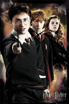 Poster Harry Potter 6 Anti Voldemort